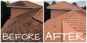 Before-and-After-Roof-Cleaning
