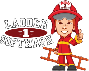 Ladder 1 Soft Wash Logo 3